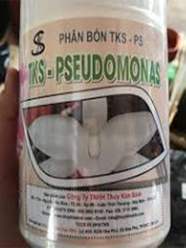 phân bón lá pseudomonas